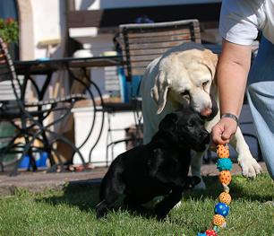 Seminar Fair Play - Spiel, Spaß und Motivation, März 2012